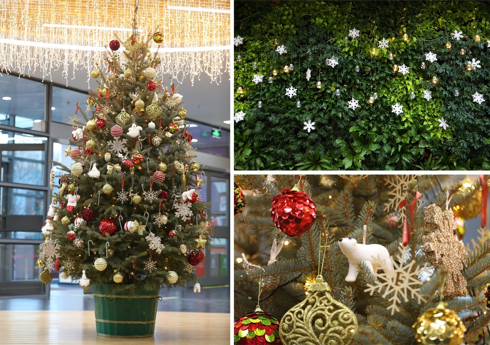 DCB Christmas decoration
