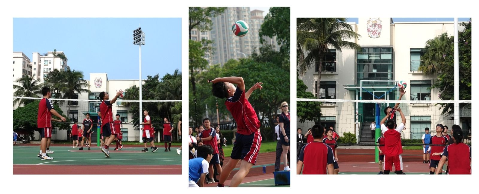 1600-650-volleyball-collage