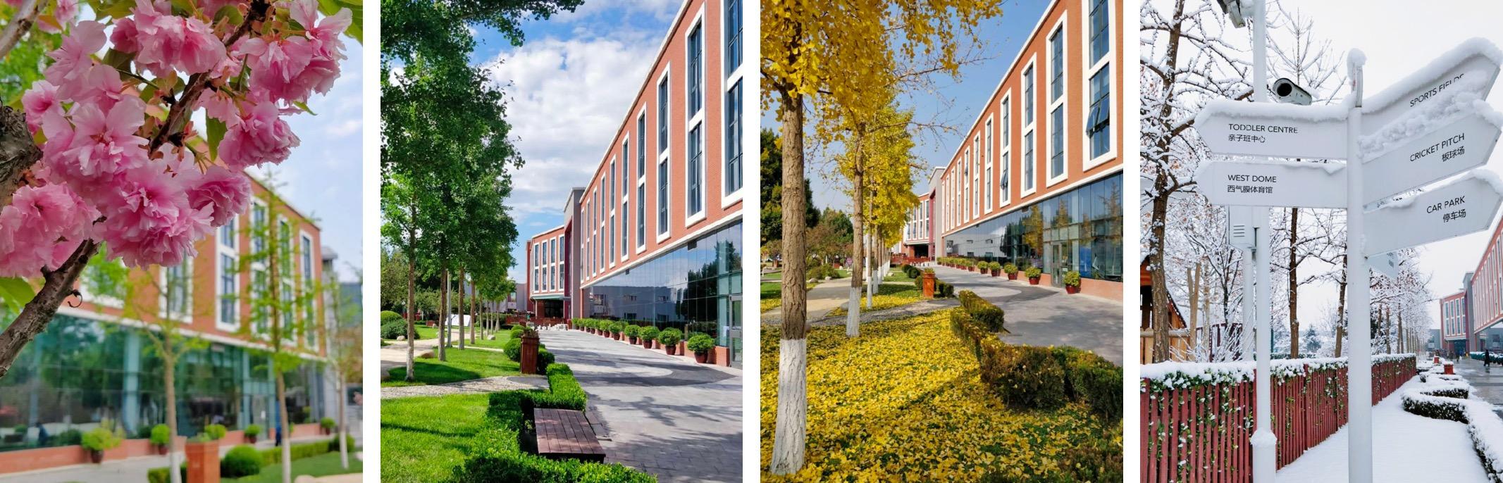 Four seasons at DCB