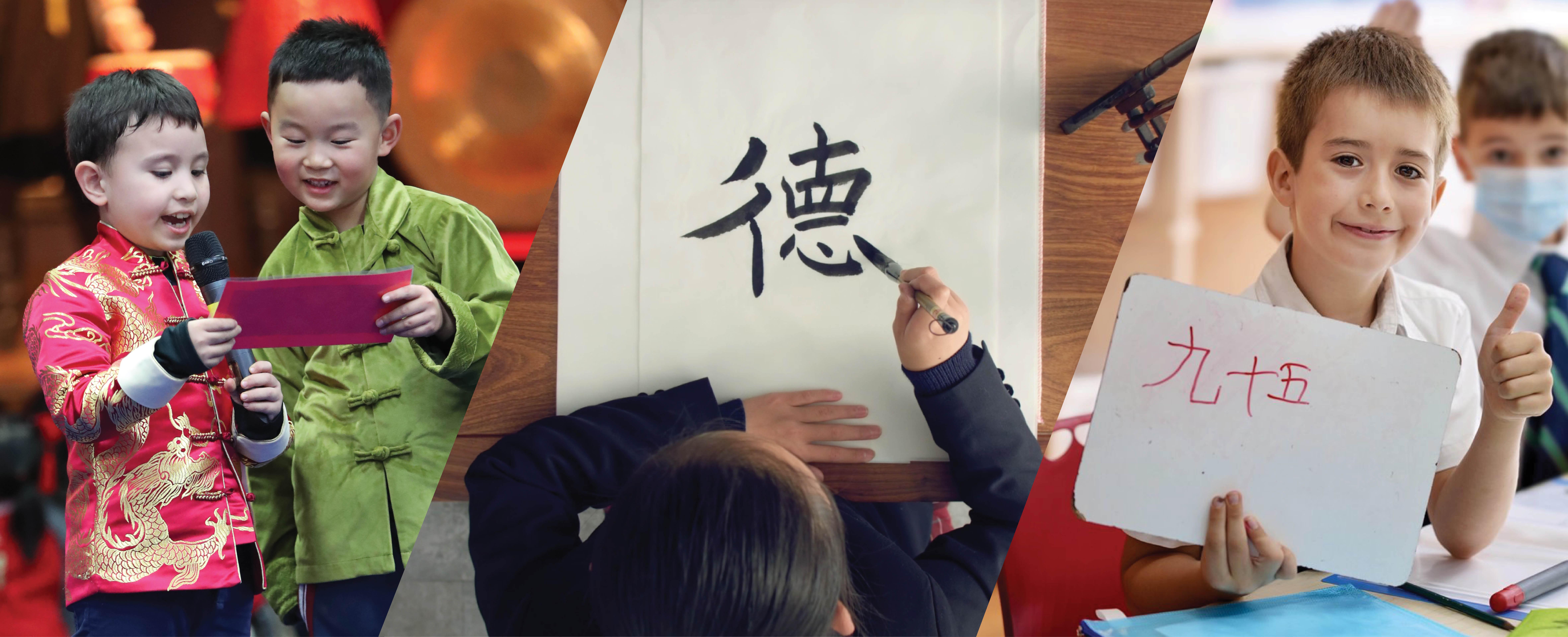 中文课程路径