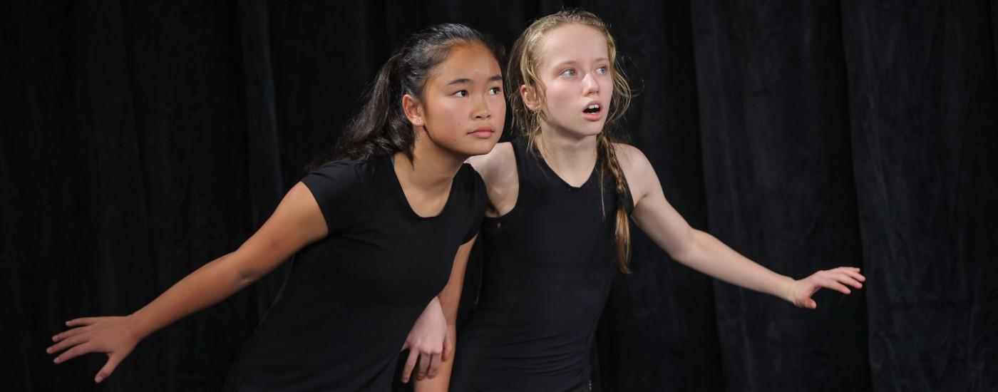 德威2018莎士比亚戏剧节