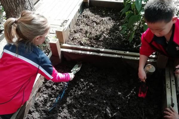 Eco-Gardening in the Big City
